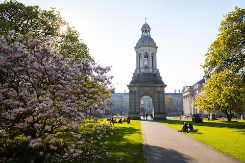 転職をきっかけに留学!アイルランドで過ごした3ヶ月