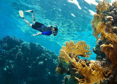 タイでダイビング